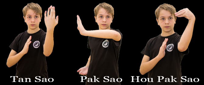 Tehnici Wu Tao Kung Fu Traditional