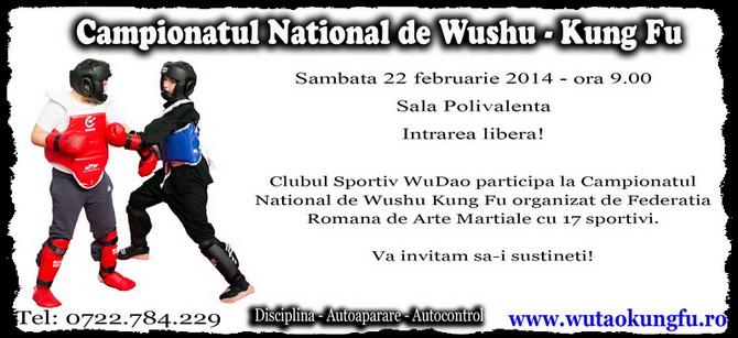 Campionatul National de Wushu Kung Fu 22 februarie 2014