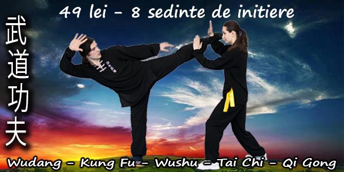 49 lei 8 sedinte de initiere in Kung Fu Wushu