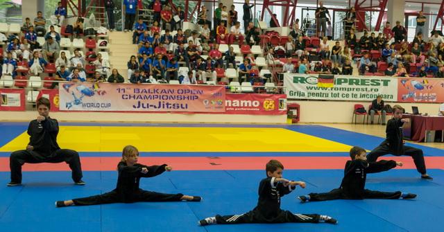 Demonstratie Kung Fu Wushu