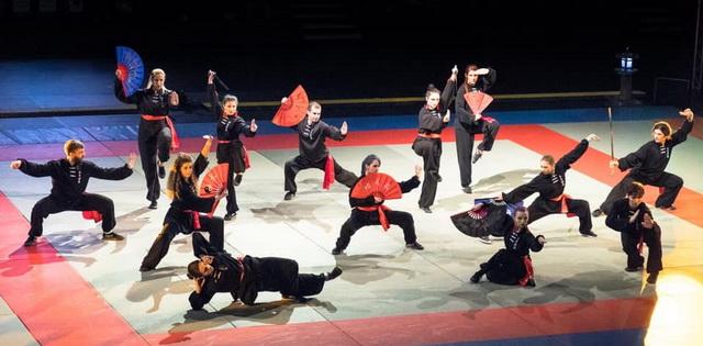 Festivalul de Arte Martiale din Antibes, Franta 2018